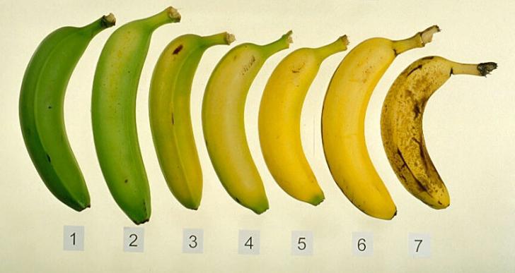 Ce se intampla in corpul tau daca mananci banane in fiecare zi?