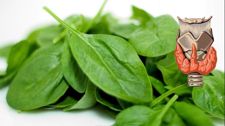 Alimente care îmbunătățesc sănătatea tiroidei