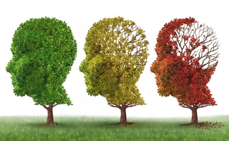 Cele patru simptome de început ale bolii Alzheimer , pe care toată lumea le ignoră