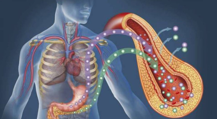 Atenție: 4 semne care indică un organism mult prea acidic! Vezi care sunt metodele naturale de echilibrare a pH-ului din corp!