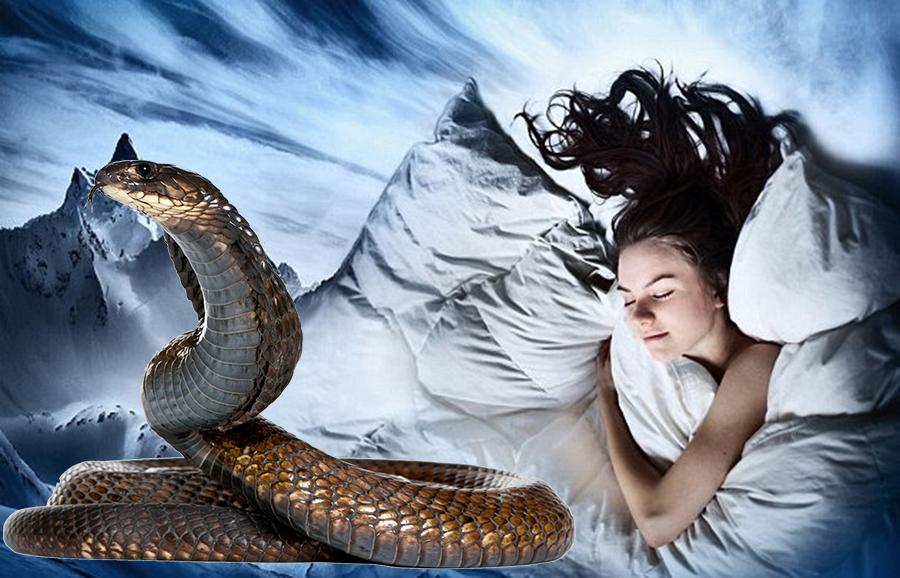 Interpretarea viselor – ce inseamna cand visezi sange, serpi sau bani