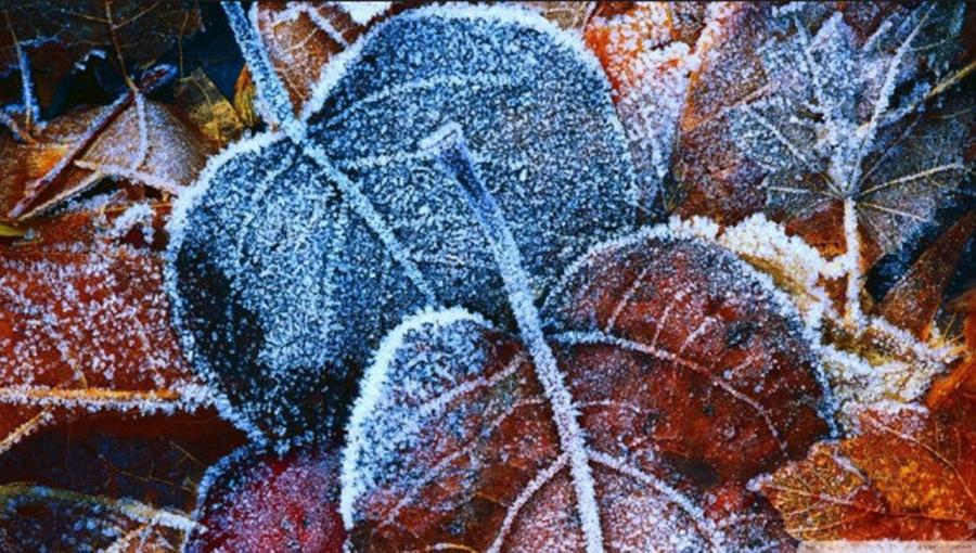 Val de frig peste România! Prognoza meteo pentru următoarele zile