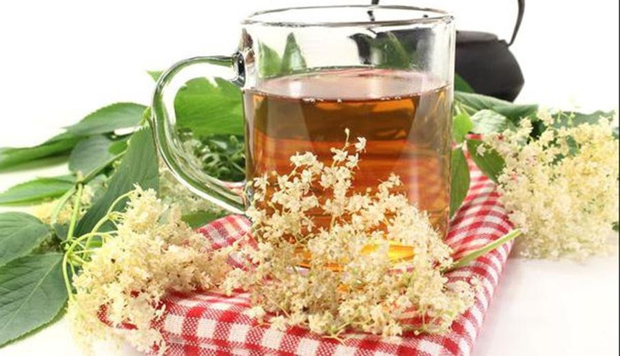 Remediu eficient pentru raceala si gripa – Ceaiul din flori de soc – Afla cum se prepara