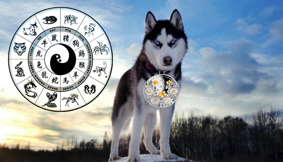 Zodiac chinezesc februarie 2018. Incepe anul Cainelui. La ce ai noroc si la ce nu, in functie de zodia ta