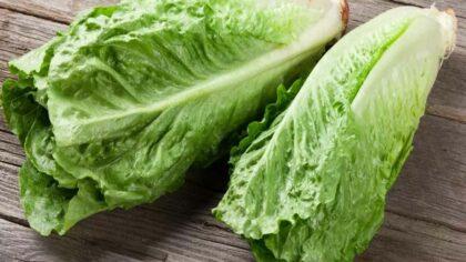 Cum arata salata Romano, beneficiile...